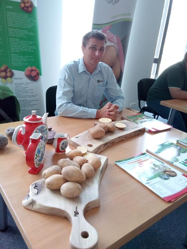 Dzień ziemniaka w Lubaniu