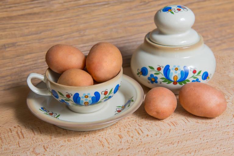 Kartoffelsorte Oberon mit HZ Zamarte