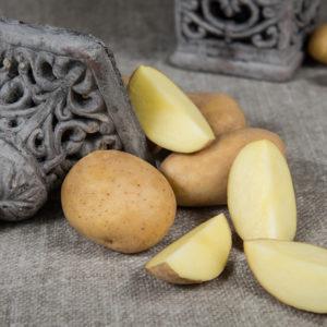 Kartoffelsorte Impresja mit HZ Zamarte